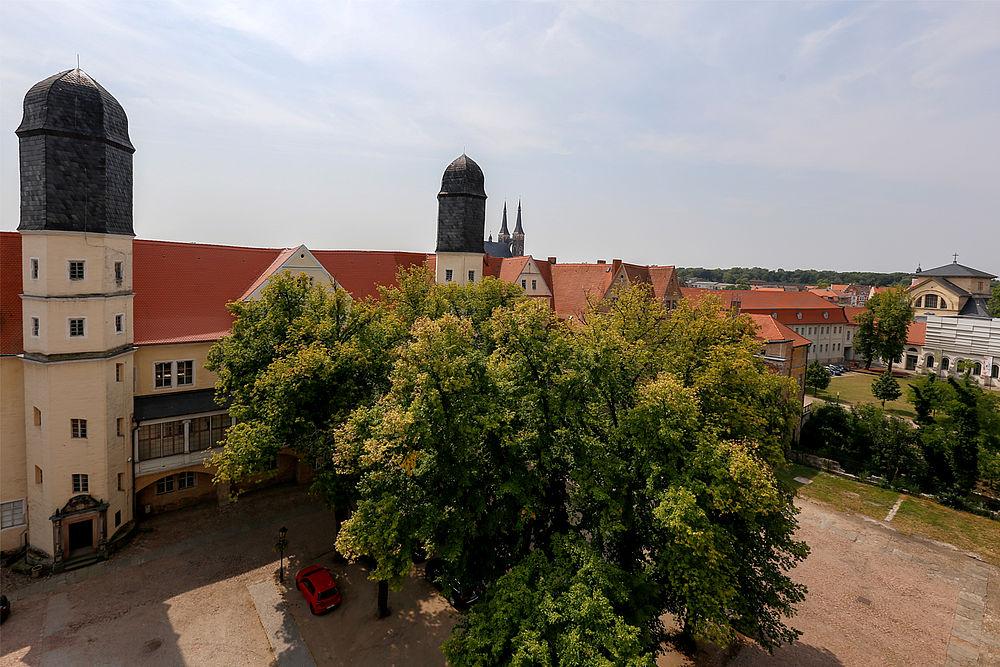 Hure aus Köthen (Anhalt)